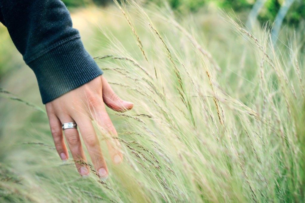 Une femme se caresse la main sur un champs de blé