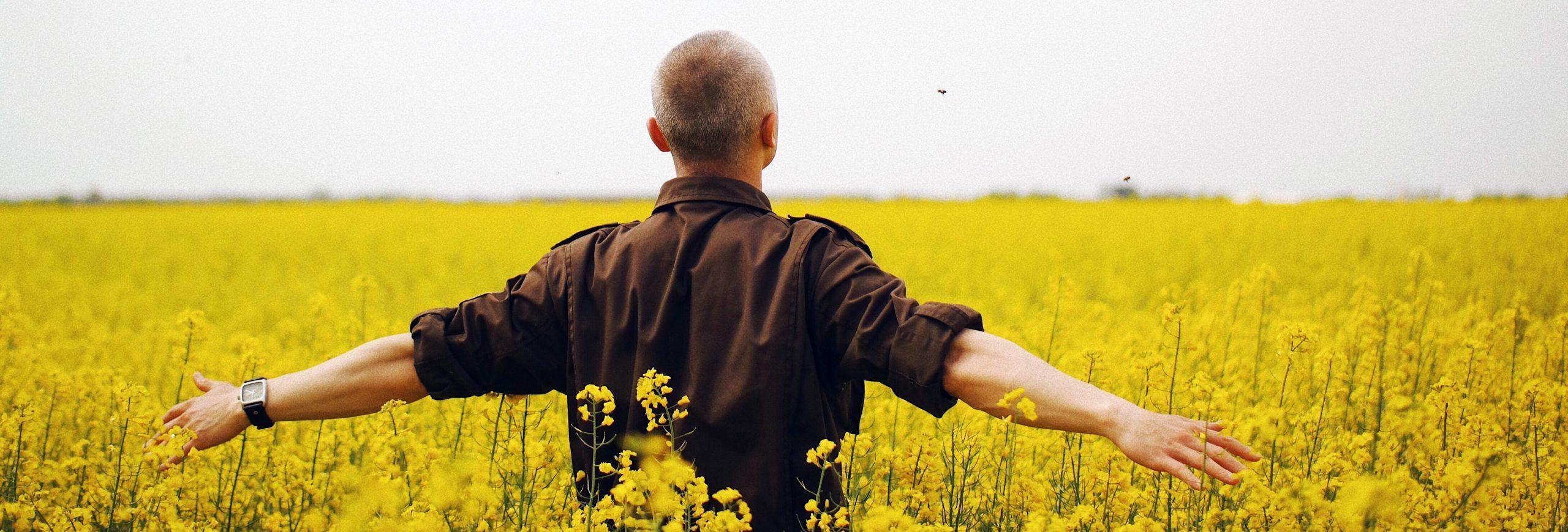 Un homme de dos, les bras tendus sur le côté, caresse les fleurs de colza à sa hauteur